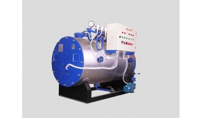 STEAM BOILERS STEAMWAY S1